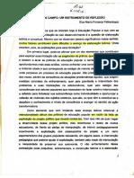 Elza Falkembach_Diario de Campo