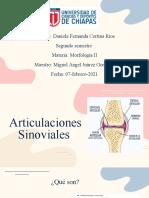 UCDC_Morfología_Articulaciones-sinoviales_DanielaCortina