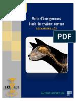 S7 - Etude Du Système Nerveux -DZVET360-Cours-Veterinaires