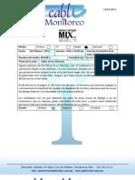 Publicable Informa 24-Feb-11 - Vespertino