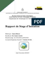 rapport de stage initiation