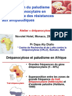 La-prévention-du-paludisme_Pr-Diallo