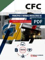 34679745 Principios e Normas Brasileiras de Contabilidade (1)