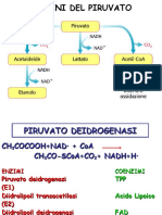 Piruvato-ciclo Di Krebs 2020