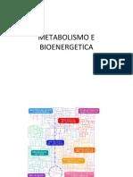 lezione bioenergetica e metabolismo