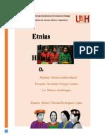 Etnias en El Estado de Hidalgo y Globalizacion