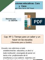Mipae Elemento de Gestión p115