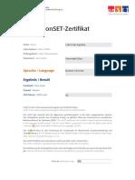 A2 Certificate copyhsk