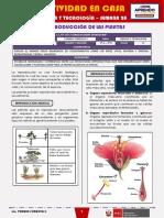SEMANA 28 - LA REPRODUCCIÓN DE LAS PLANTAS [2do CIENCIA Y TECNOLOGÍA]