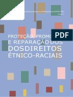 1 - Livro 12_Direitos Etno-Raciais.SMdocx