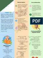 Copy of Copy of Brochure Ppe's Program (1)