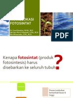 5 Translokasi Floem_sfh 1