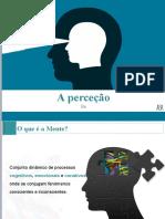 1 - A Perceção