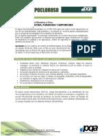 FICHA DE TECNICA- -ACIDO HIPOCLOROSO (2)