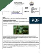 1101-1102 Física Guía 1-2 Pilar Acero