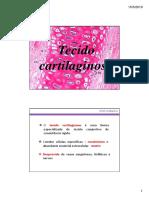 Tecido Cartilaginoso Osseo