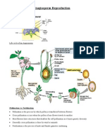 Angiosperm_Reproduction_Handout