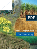 IEA Bioenergy 2009 Annual Report