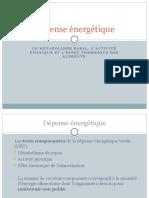 4. Dépense énergétique