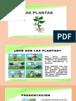 Actividad 33 Mejoramiento de Las Plantas y Animales