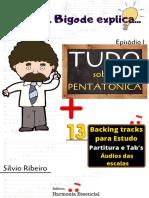 Tudo sobre Pentatônica - Série Prof. Bigode explica - Silvio Ribeiro