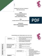 Cuadro Sinoptico de Control Prenatal Pedro Adrian Martinez