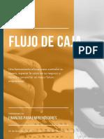 e_book FLUJO DE CAJA