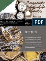 Presentación1 Fundamentos de cereales