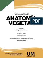 Anatomia Vegetal 0203f_o