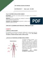 Sistema Circulatoro-maquinas Simples y Compuestas. Talleres 10-12