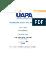 Trabajo-Final-de-Analisi-de-Conducta (1)