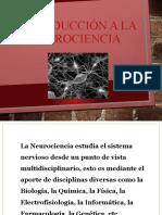 277585469-Introduccion-a-la-Neurociencia-pptx