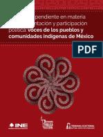 Agenda Participacion Politica de los pueblos indígenas en México