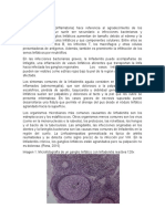 Linfoadenitis reactiva
