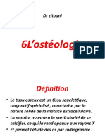 Anatomie part 2