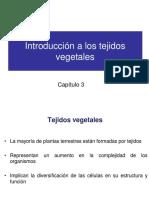 08-Tejidos vegetales
