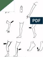 Parties du corps(1)