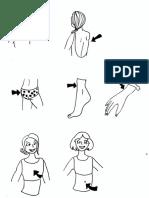 Parties du corps (3)