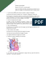 Cuestionario Sistema Sanguíneo