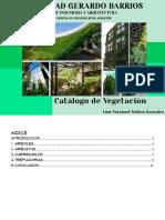 molinagonzalezluisnatanael_5261_1676257_Catalogo de plantas - Luis Natanael Molina González