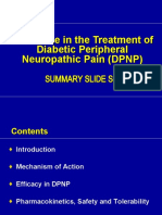 DPNP_Global_Summary_Slide_deck_6_27_08