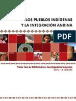 201166161329libro_indigenas