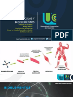 Biomoleculas y Bioelementos (4)Nuevo (3)
