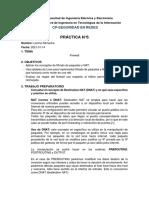Preparatorio_06_RemacheL
