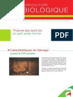 AB_Produire-oeufs-bio-petit-atelier-fermier_2019