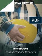 Introdução a Segurança Do Trabalho