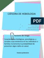 FACTORES DE RIESGO Y PROTECTORES