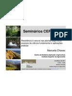 Seminário de Manuela Chaves