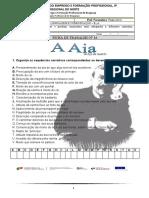 FICHA DE TRABALHO Nº16_O conto_A Aia