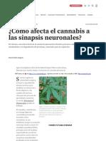 www_investigacionyciencia_es_noticias_cmo-afecta-el-cannabis-a-las-sinapsis-neuronales-16822